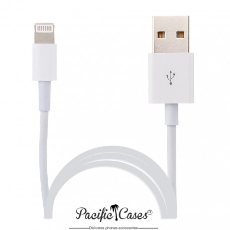 Câble lightning pour Apple iPad Mini iPad Air vers USB