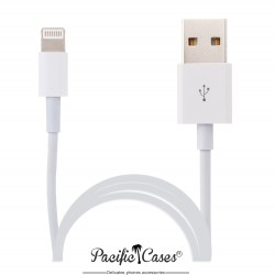 Câble lightning pour Apple iPad Mini iPad Air vers USB